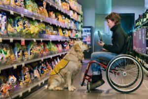 U invalidity jsou úrazy a nehody příčinou pouhých 6 % případů. U pracovní neschopnosti pak trochu víc, ale i tak je to pouhých 10 %. Nejčastější důvody pro přiznání invalidity jsou rakovina a duševní poruchy.