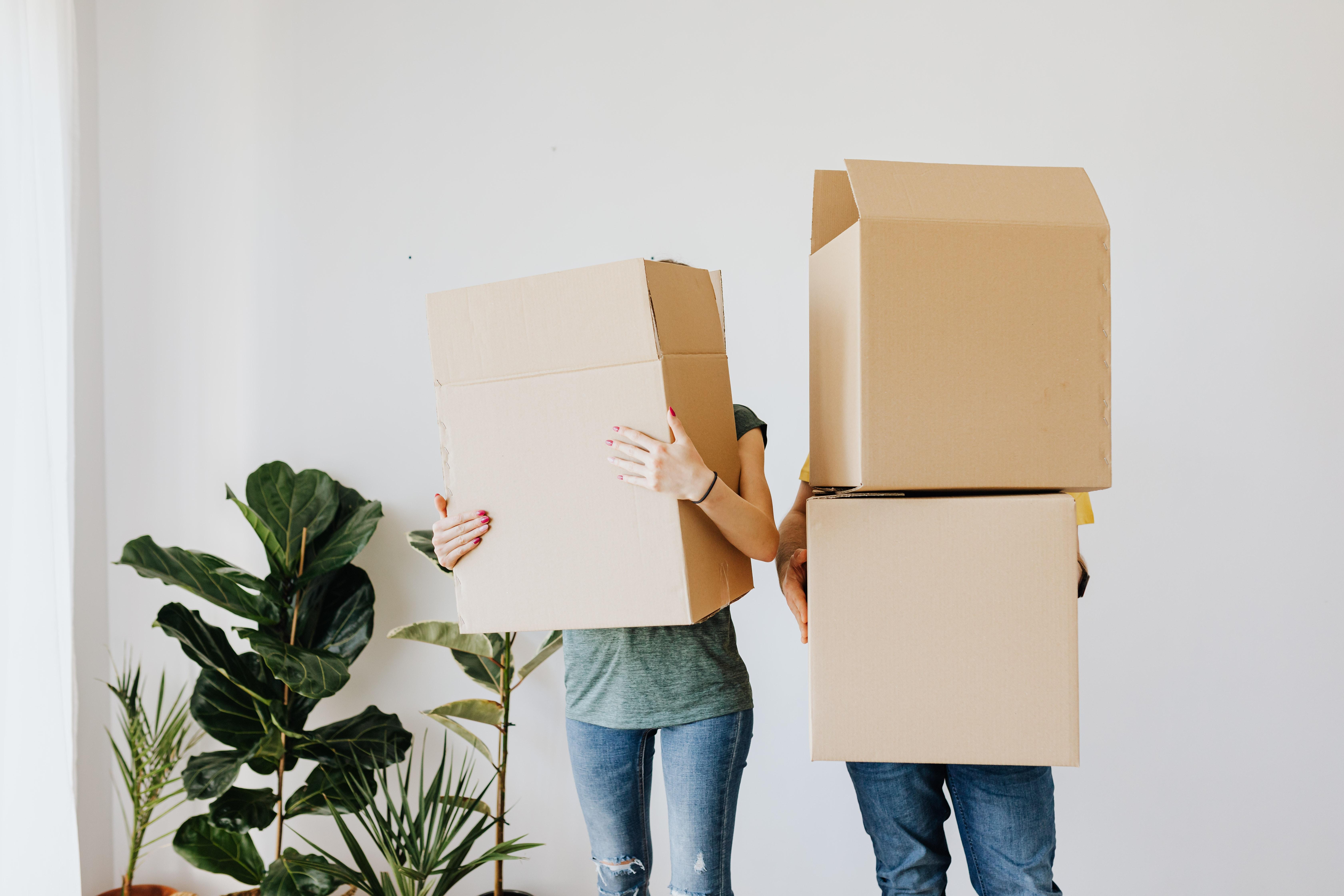 krabice, pár, bydlení, vzájemná motivace